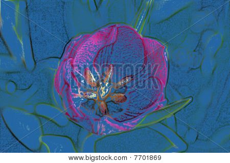 Stock Image Of Tulip Art