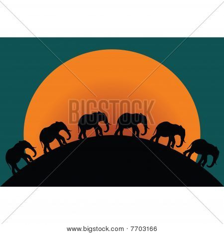 Silhouettes Of Elephants At Twillight