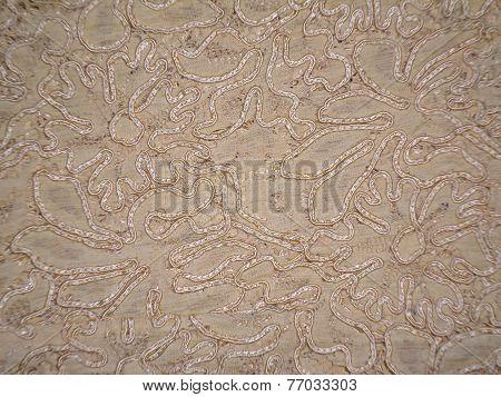 Old kebaya cloth