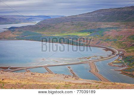 Seal bay, of Westfjords, Iceland