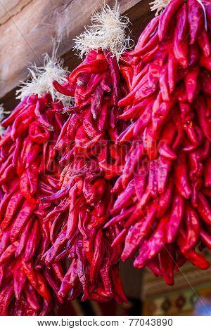 Hanging Chili Ristras