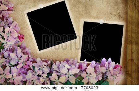 Grunge floral Background with blank Fotos