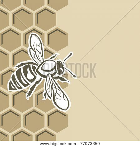 monochrome design with bee and of honeycomb