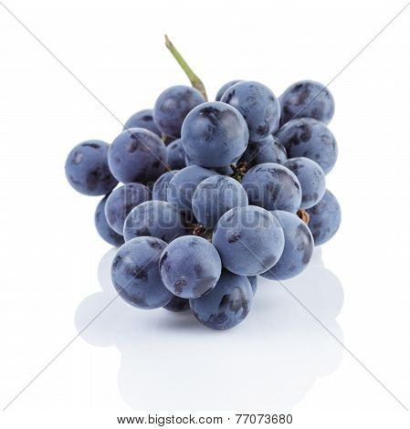 Ripe Isabella Grapes Isolated