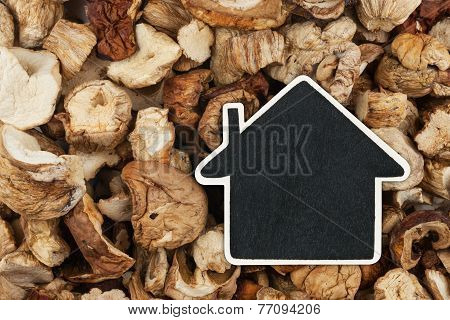 House Pointer, The Price Tag Lies On  Dried  Mushroom