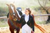 stock photo of horse girl  - Beautiful girl with horse outdoors - JPG