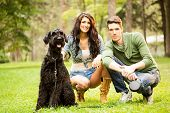 stock photo of schnauzer  - The young attractive girl crouches in the park with her boyfriend next to her dog a black giant schnauzer - JPG