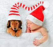 stock photo of christmas puppy  - Newborn baby and puppy wearing Christmas Santa hats - JPG