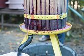image of wine-press  - Close up of traditional wine making in Romania - JPG
