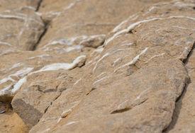 pic of calcite  - Limestone rock with white calcite veins - JPG
