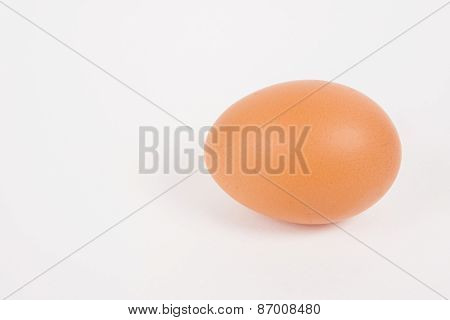 Single Chicken Egg  On White  Paper Background