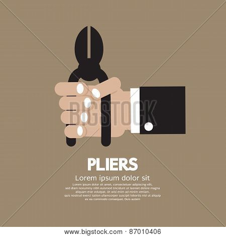 Pliers In Hand.