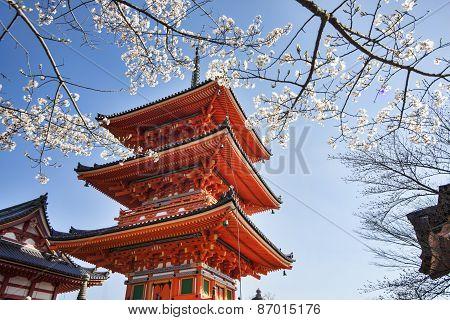 Kiyomizu-dera In Temple Kyoto