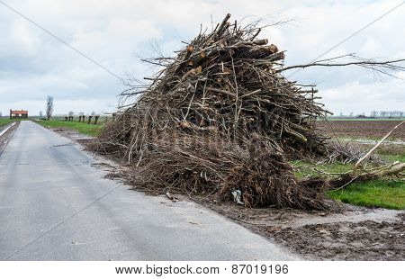 Pile With A Lot Of Pruned Branches