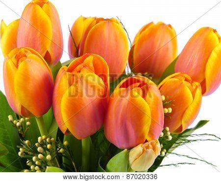 Bouquet of orange Tulip flowers