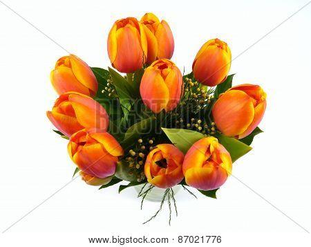 Isolated bouquet of orange Tulip flowers