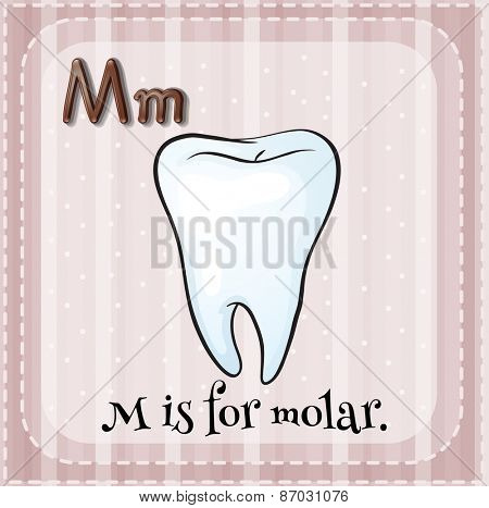 Flashcard letter m is for molar