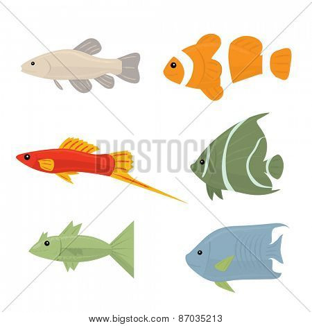 Collection of tropical fish - set of vector icons Isolated on white background