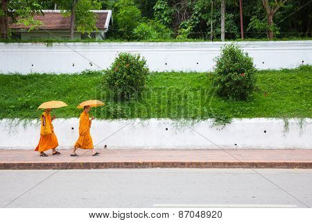 Buddhist monks under umbrella walking on the street, Laos
