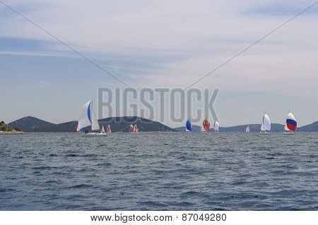 parade of yachts with colorful sails