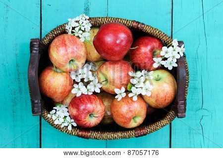 Basket of red apples with white spring flowers on wood table