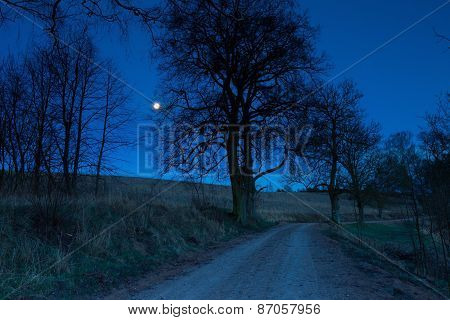 Sandy Rural Road At Night