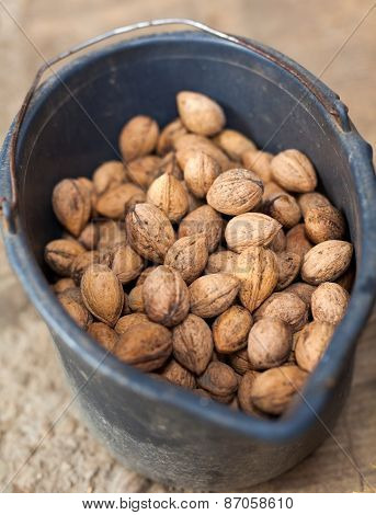 Bucket Of Walnuts