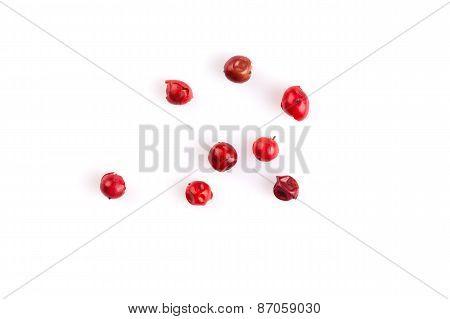 Red Peppercorns