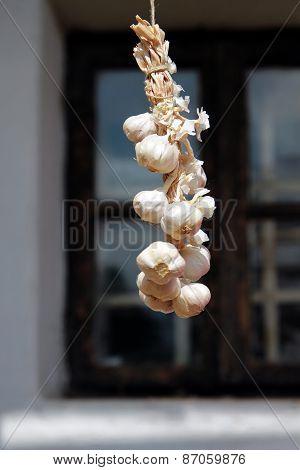 Garlic Bundle