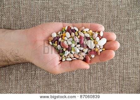 Man Holding 15 Mixed Legumes In His Hand