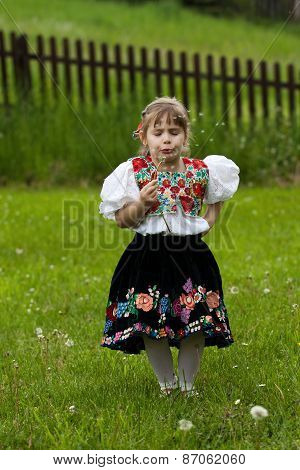 Folk Costumes Little Girl On The Meadow