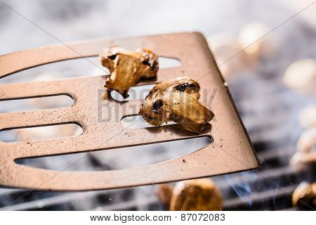 Grilled champignon mushrooms on spatula