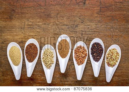 seven healthy, gluten free grains (quinoa, brown rice, amaranth, teff, buckwheat, sorghum. kaniwa), top view of small spoons against rustic wood with a copy space