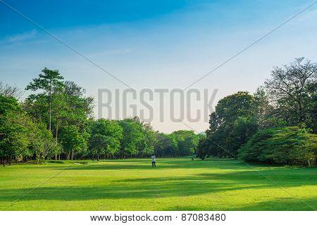 Beautiful Green Park With Sun Light