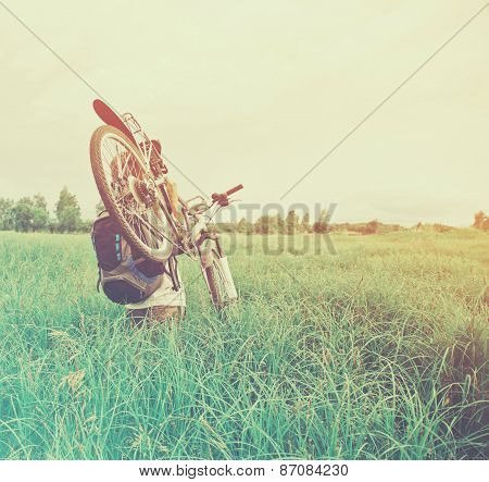 Cyclist Man Carries Bicycle On Meadow