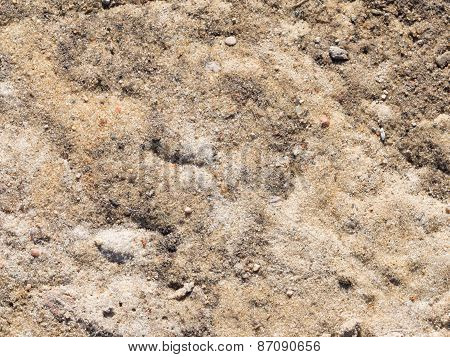 Gray-brown Soil And  Sand