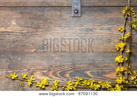 Yellow Blossoms On A Wooden Chest