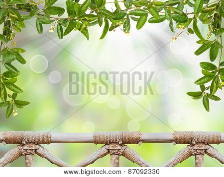 Vine Leaves And Handrail Wood Over Abstract Green Background