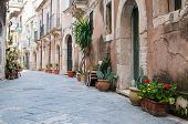 picture of vase flowers  - View of one typical street in Ortigia the old part of Syracuse and some ornamental flowered vases - JPG