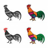 picture of black-cock  - Monochrome silhouette and colorful vector illustration of the cock - JPG