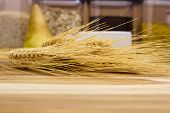 foto of spike  - Spikes of cereal on the kitchen wooden table - JPG