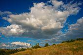 image of steppes  - rural landscape in the forest - JPG
