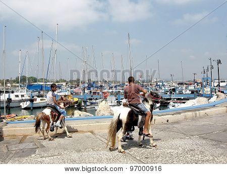 Akko The Port 2008