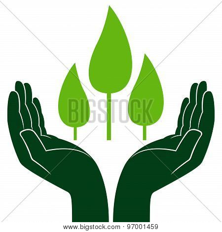 Green Trees In Human Hands