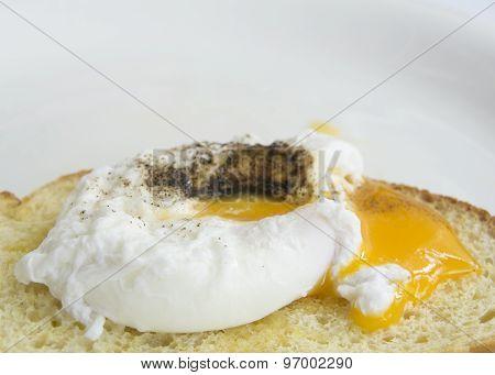 Egg Benedict Toast English Breakfast Plate Concept