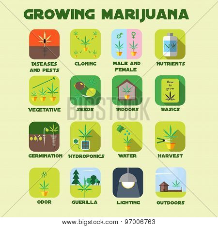 Marijuana growing icon set.