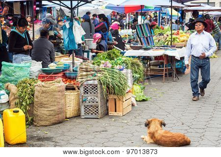 Food Market Activity