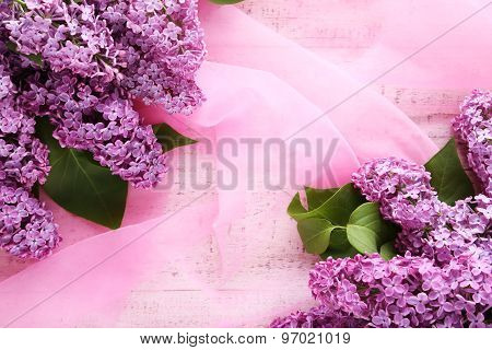 Beautiful Lilac Flowers On Pink Background