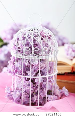 Beautiful Lilac Flowers In Cell On Pink Background