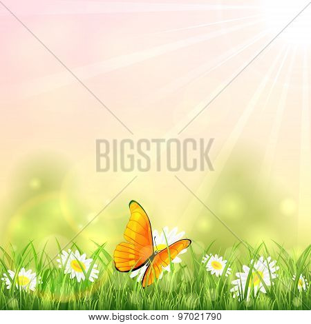 Orange Butterfly And Flower